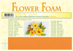 Leane Flower Foam 25.4162 Orange